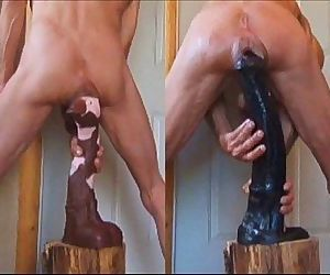 Stallion Penis and..